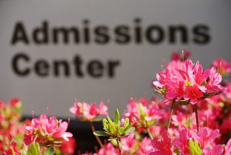 College admissions: how smart, or how rich?